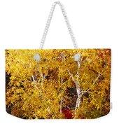 Brilliance Of Autumn On Rib Mountain Weekender Tote Bag