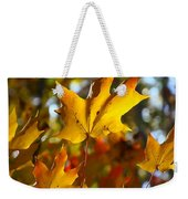 Brilliant Autumn Light And Color Weekender Tote Bag