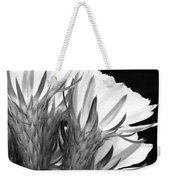 Brilliant Blossoms Diptych Right Weekender Tote Bag