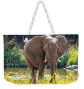 Brilliant Elephant Weekender Tote Bag