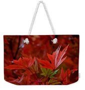 Brilliant Red Maples Weekender Tote Bag by Linda Unger