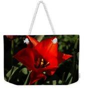Brilliant Spring Sunshine In Red  Weekender Tote Bag