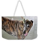 Brindle Greyhound Dog Usa Weekender Tote Bag