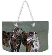Brindle Greyhound Dogs Usa Weekender Tote Bag