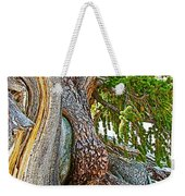 Bristlecone Pine On Ramparts Trail In Cedar Breaks National Monument-utah  Weekender Tote Bag