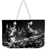 Bristlecone Twins In Infrared Weekender Tote Bag