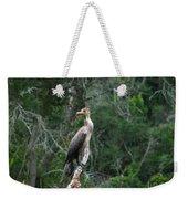 Bristol Cormorant Weekender Tote Bag