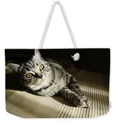 British Short Hair Weekender Tote Bag