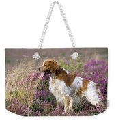 Brittany Dog, Standing In Heather, Side Weekender Tote Bag