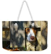Brittany Watching Through The Fence Weekender Tote Bag