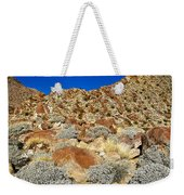Brittlebush Leaves And Santa Rosa Mountains From Borrego Palm Canyon In Anza-borrego Desert Sp-ca Weekender Tote Bag