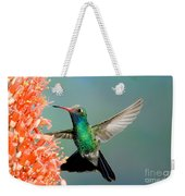 Broad-billed Hummingbird At Ocotillo Weekender Tote Bag
