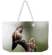 Broad-tailed Hummingbird Sit  Weekender Tote Bag