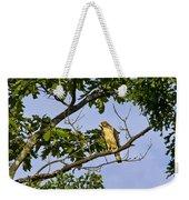 Broad Winged Hawk Weekender Tote Bag