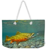 Brook Trout And Coachman Wet Fly Weekender Tote Bag