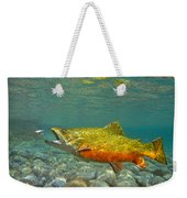 Brook Trout And Royal Coachman Weekender Tote Bag