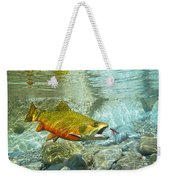 Brook Trout And Silver Doctor Weekender Tote Bag