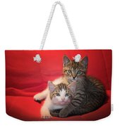 Brothers Kittens Weekender Tote Bag