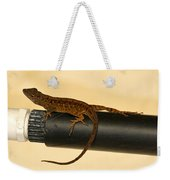Brown Anole On Pipe Weekender Tote Bag