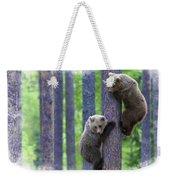 Brown Bear Climbing Lesson Weekender Tote Bag