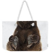 Brown Bear Holding Its Paws Germany Weekender Tote Bag