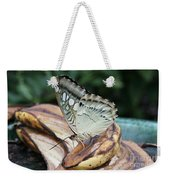 Brown Clipper Butterfly #3 Weekender Tote Bag