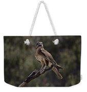 Brown Falcon V2 Weekender Tote Bag