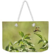 Brown Hawker Dragonfly Weekender Tote Bag