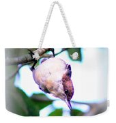 Brown-headed Nuthatch 9173-006 Weekender Tote Bag