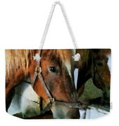 Brown Horse In Stall Weekender Tote Bag