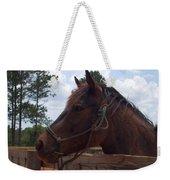 Brown Horse Weekender Tote Bag