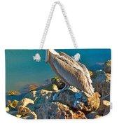 Brown Pelican In San Carlos-sonora Weekender Tote Bag