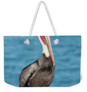 Brown Pelican Pelecanus Occidentalis Weekender Tote Bag