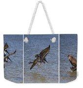 Brown Pelican - Triptych Weekender Tote Bag