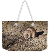 Brown Rat Weekender Tote Bag