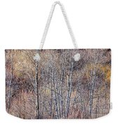 Brown Winter Forest With Bare Trees Weekender Tote Bag