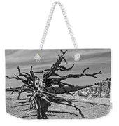 Bryce Canyon Tree Art Weekender Tote Bag