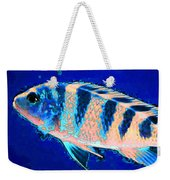 Bubbles - Fish Art By Sharon Cummings Weekender Tote Bag