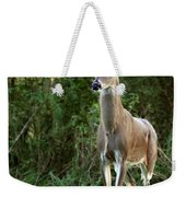 Buck In The Meadow Weekender Tote Bag