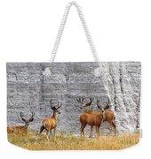 Bucks Abound Weekender Tote Bag