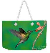Buff-tailed Coronet Weekender Tote Bag