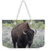 Buffalo Bird Weekender Tote Bag