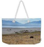 Buffalo Of Antelope Island V Weekender Tote Bag