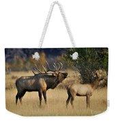Bugling Elk With Calf Weekender Tote Bag