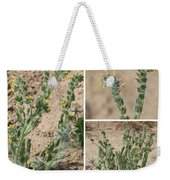 Bugloss Fiddleneck Collage Weekender Tote Bag