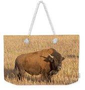 Bull Bison At The  Elk Ranch Grand Teton National Park Weekender Tote Bag