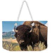 Bull Bison Weekender Tote Bag