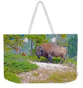 Bull Bison Near Mud Volcanoes In Yellowstone National Park-wyoming Weekender Tote Bag