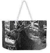 Bull Elk Bw Weekender Tote Bag