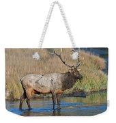 Bull Elk Crossing River Weekender Tote Bag
